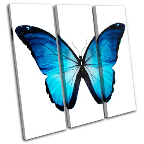 Morpho Butterfly Blue Animals - 13-0535(00B)-TR11-LO